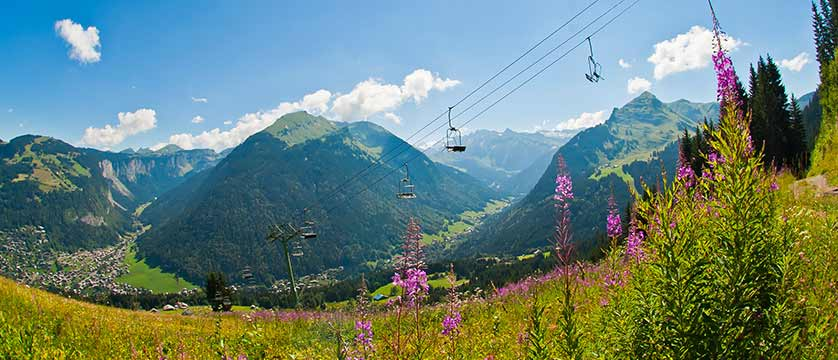 Fields with chairlifts overhead.jpg
